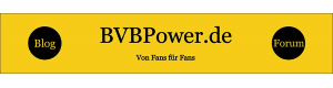 BVB Power Logo